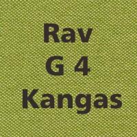 Rav G4