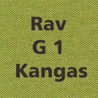 Rav G1